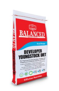 Youngstock yearling stud feed ration