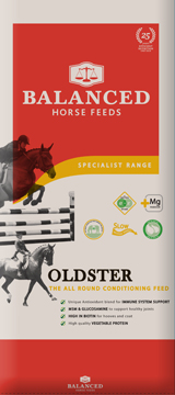 horse food for mature horse
