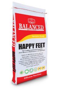 Balanced Happy Feet